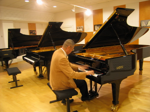piano,pianist,musical instrument,keyboard,player piano
