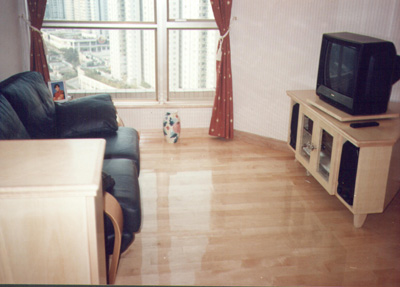 floor,flooring,room,property,living room