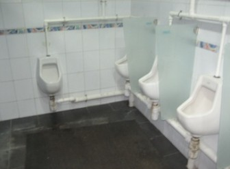 toilet,urinal,plumbing fixture,bathroom,toilet seat