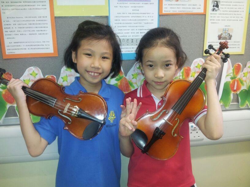 violin,violin family,viola,fiddle,musical instrument