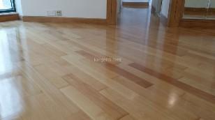 floor,flooring,hardwood,property,wood
