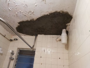 wall,ceiling,mold,floor,