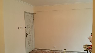 wall,property,room,home,plaster