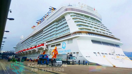 5626,cruise ship,passenger ship,water transportation,ship,mode of transport