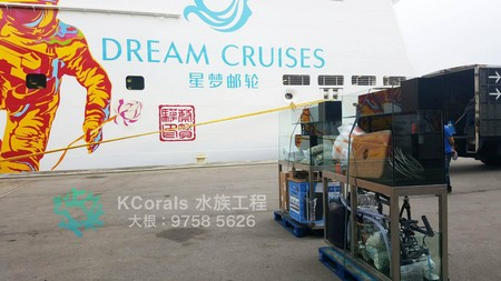 DREAM CRUISES 星梦邮轮 大根: 9758 5626,vehicle,mural,