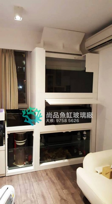 尚品魚缸玻璃 大根: 9758 5626,property,room,furniture,interior design,