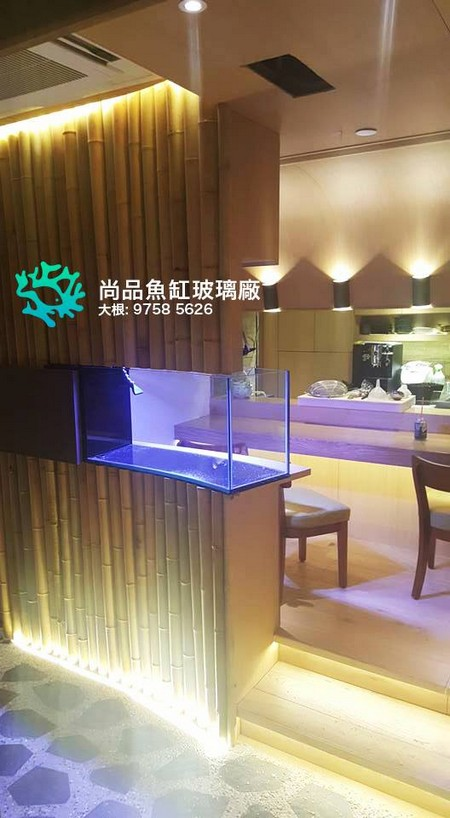尚品魚缸玻璃廠 大根: 9758 5626,property,interior design,ceiling,light,lighting