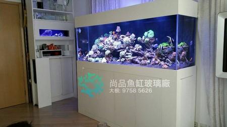 尚品魚缸玻璃廠 大根: 9758 5626,aquarium,display device,