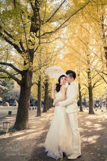 photograph,gown,bride,woman,wedding dress