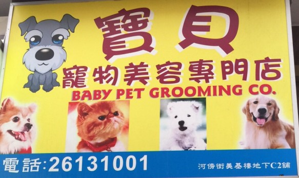 寵物美容專門店 BABY PET GROOMING CO 電話:26131001 河傍街美基樓地下C2舖,dog breed,text,dog,dog like mammal,snout