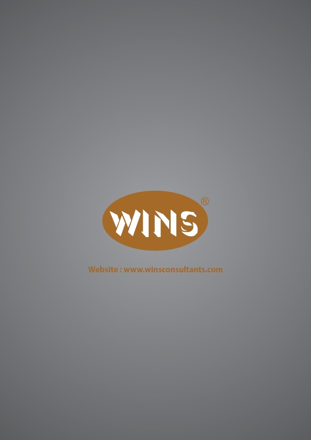 WINS Website: www.winsconsultants.com,text,font,logo,product,