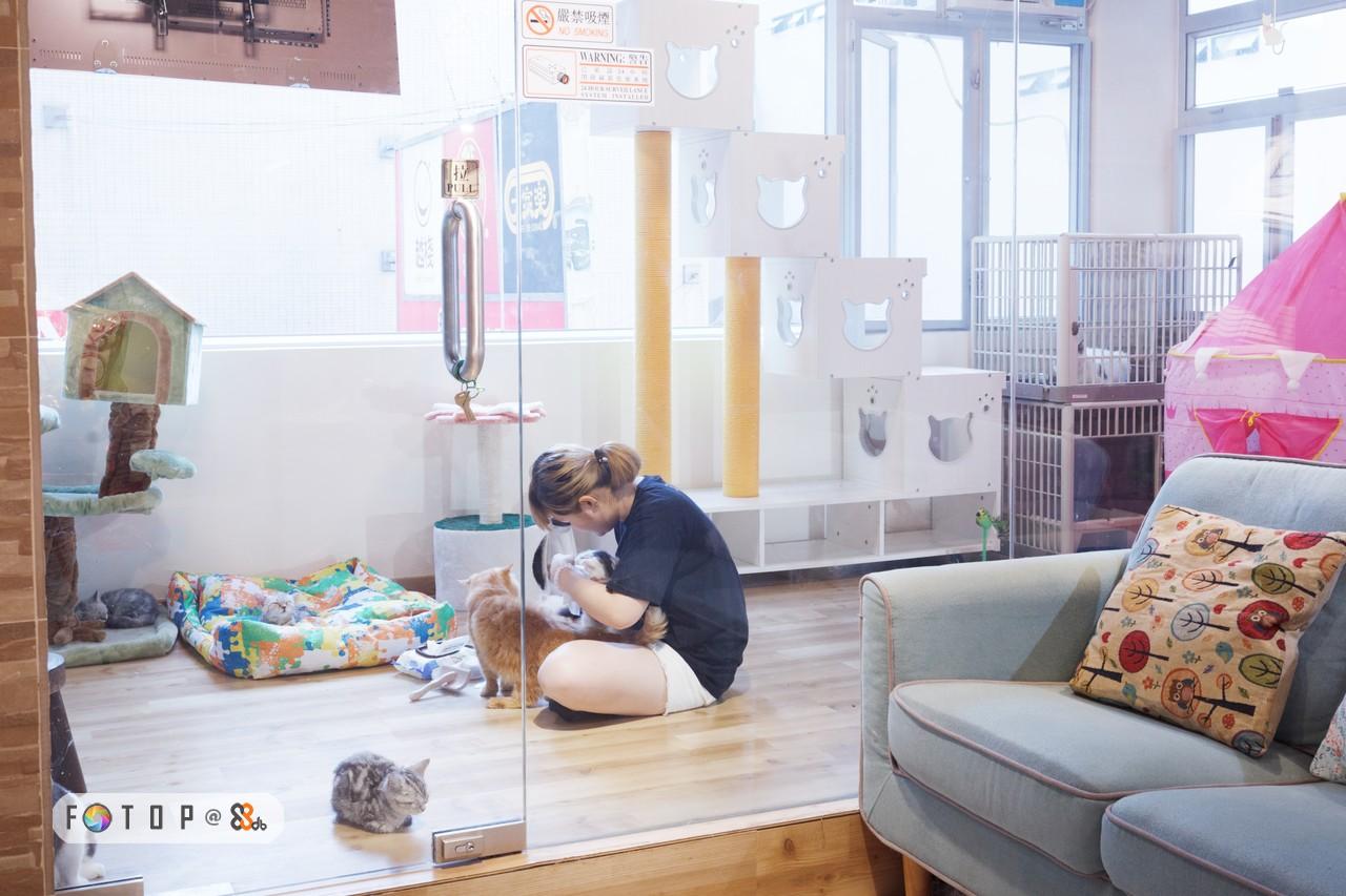 嚴禁吸煙! O SMOKN,room,furniture,interior design,home,living room