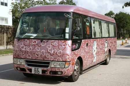 motor vehicle,bus,vehicle,transport,mode of transport